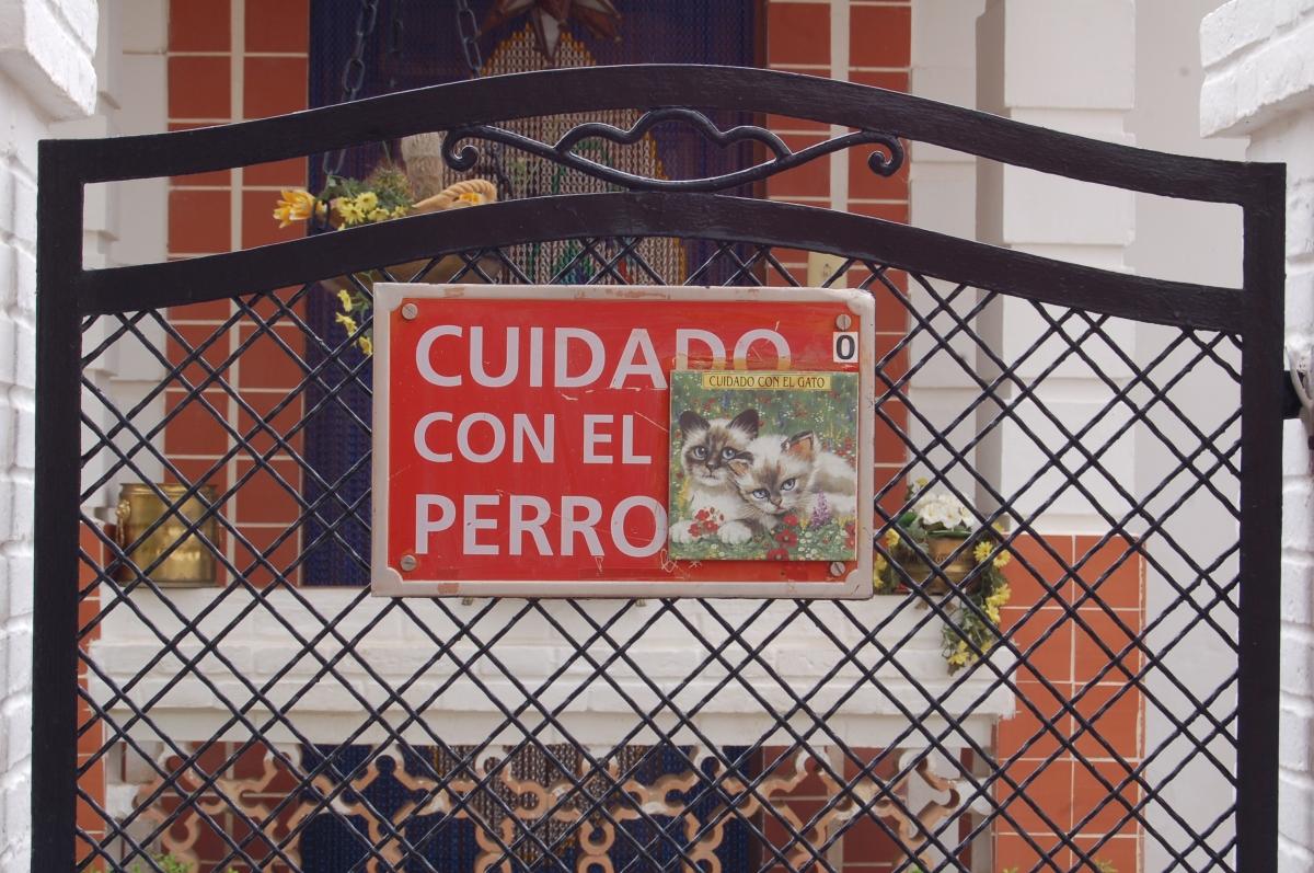 Conclusiones de #ProyectoNoTocar: soluciones para un museo sin prohibiciones
